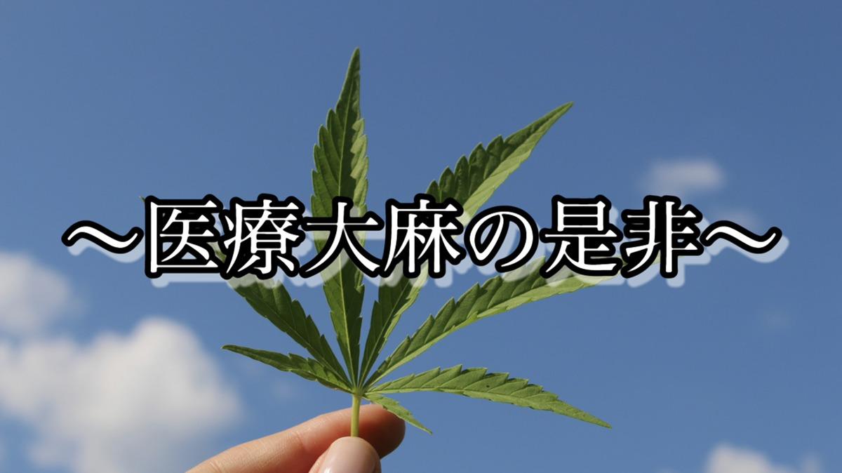 CBDについても言及!高樹沙耶さん生出演の番組~医療大麻の是非~